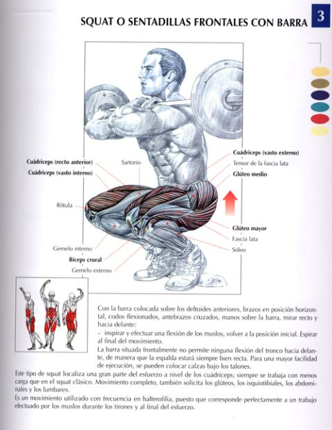 Construye una base sólida, ejercicios para piernas - Punto Fape