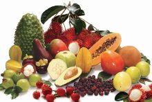 Mitos en regimenes de adelgazamiento y alimentación