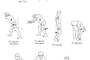 Estiramiento y entrenamiento con pesas