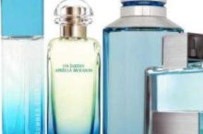 ¿Sabes cual es la diferencia entre perfume y colonia?