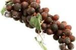 La uva, fuente de energía y nutrientes