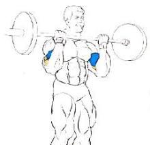 curl de biceps, posición final