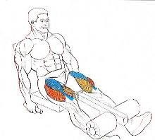 esquema, extensiones de pierna en máquina