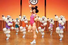 Fitness Caniche con Mariko Takahashi
