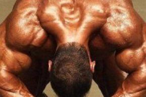 Definición muscular, para hacer visibles tus músculos