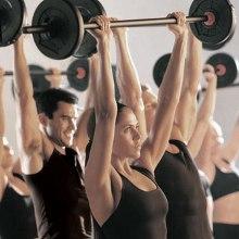 Avances en estudios de regeneración muscular