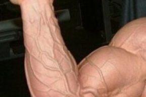 Trucos Pro, entrena bíceps con Christian Thibaudeau