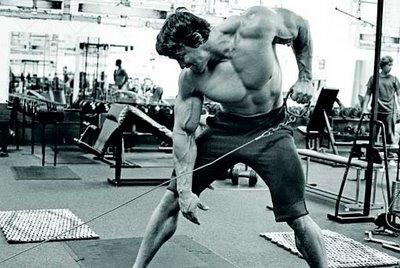 Remo a un brazo por Arnold Schwarzenegger