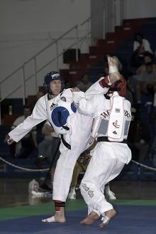 El Taekwondo como generador de valores 1