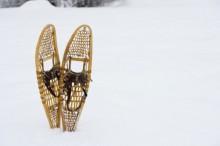 Las raquetas de nieve 1