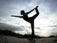 Sistema Iyengar Yoga 1