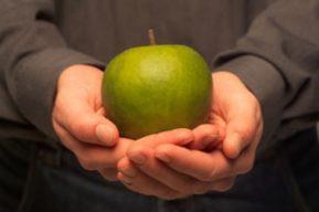 Una cuestión conceptual: ¿Cómo diferenciar la nutrición de la alimentación?