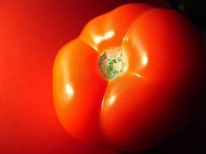 Sopas de tomates frescos: Una receta exquisita y nutritiva 1
