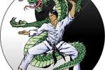 Hapkido, el poder interior
