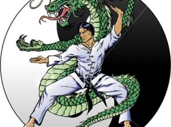 Hapkido, el poder interior 1