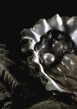 Ostrin Q10, la salud está en las ostras 1