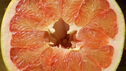 El menú del día: Vieiras con ensalada de pomelo