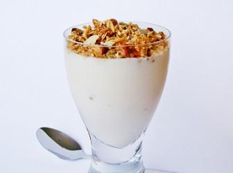 Recetas saludables con yogurt 1