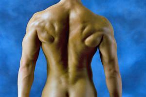 Entrenamiento y definición muscular 1