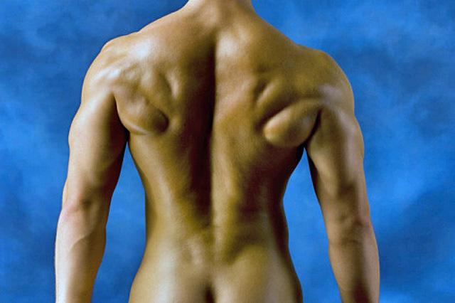 Entrenamiento y definición muscular