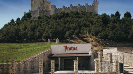 Visita Bodegas Protos