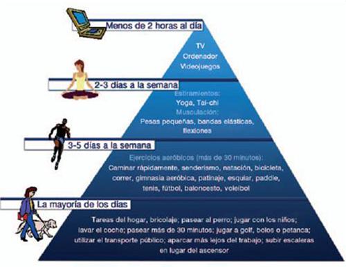 La actividad física ya tienen su Pirámide propia 2