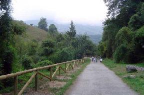 Senderismo  en Asturias, Senda del Oso