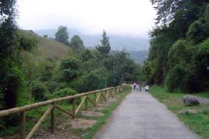 Senderismo  en Asturias, Senda del Oso 1