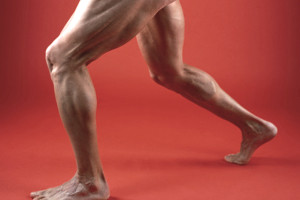 Desarrollo muscular de muslos y glúteos 1