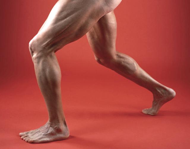 Desarrollo muscular de muslos y glúteos