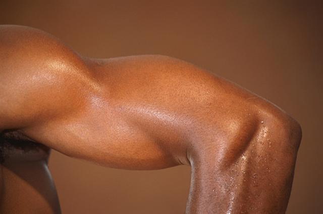 El trabajo de los tríceps