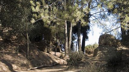 Excursión por el Parque de Collserola , Barcelona