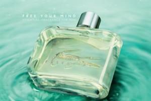 Perfume Lacoste Essential para ellos 1