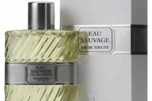 Perfumes para hombre 2010 1