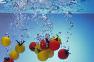 Los oligoelementos en la dieta mediterránea 1