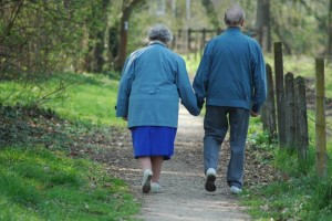 Alzheimer, Hierba de San Juan podría combatirlo 1