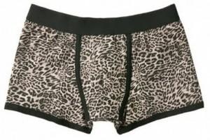Boxers de leopardo de Zara 1