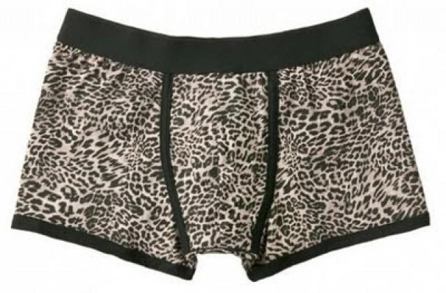 Boxers de leopardo de Zara