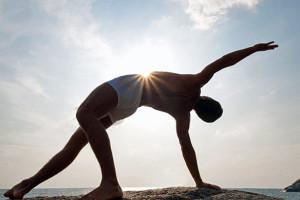 Fitness y entrenamiento cardiovascular 1