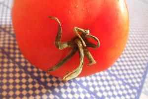 Dieta del tomate 1