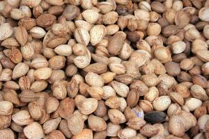 Alimentos que bajan el colesterol 1