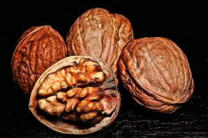 Las propiedades de las nueces 1