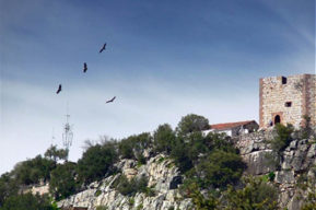 Parque Nacional del Monfragüe y el avistamiento de aves