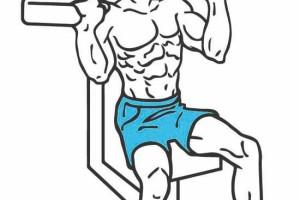 Hombros más anchos: los ejercicios básicos 2