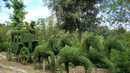 Un bosque encantado cerca de Madrid