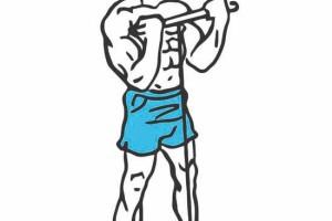 Brazos enormes: ejercicios para los bíceps 2