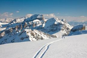 Ropa para esquí de fondo