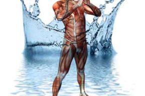 Importancia de la hidratación al practicar aeróbic