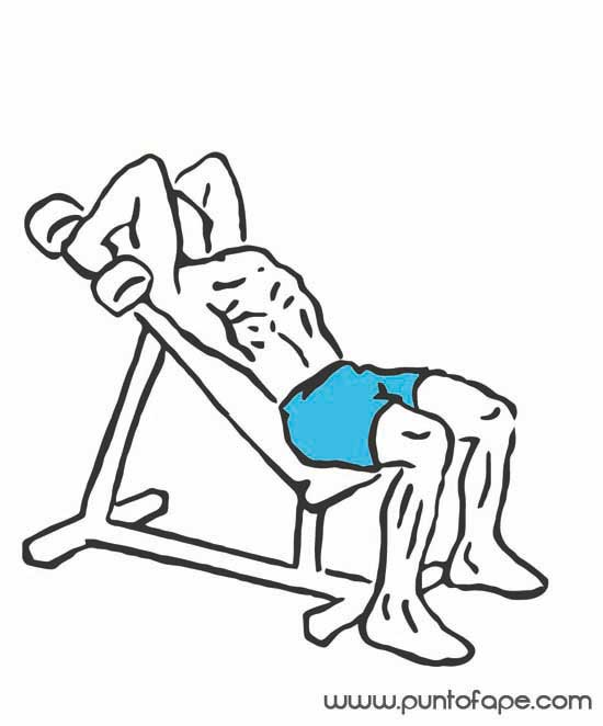 Brazos más grandes: los tríceps
