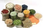 Alimentación equilibrada esencial para la salud
